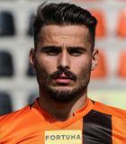Gerard Artigas